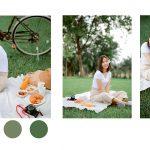 Lightroom-picnic-preset2