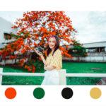 Lightroom-orange-green-film-11