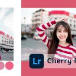 Lightroom-cherry-pink